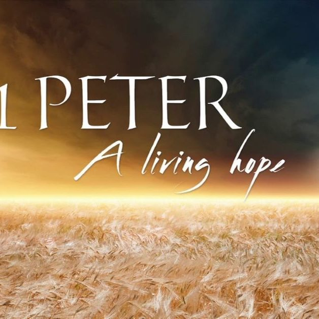 1 Peter Resized